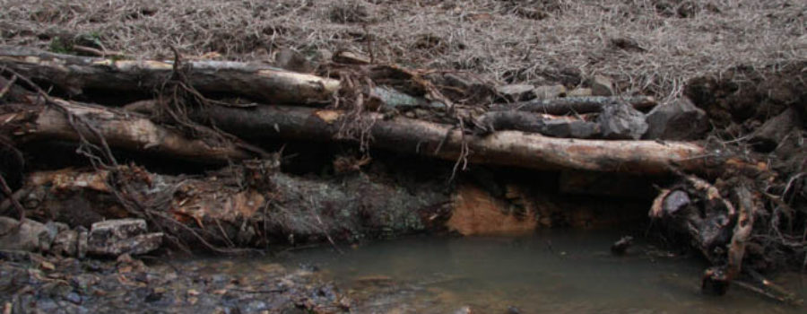 Sweetwater Farm Stream Project