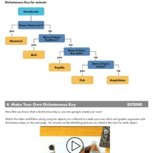 5E: If/Else – Dichotomous Keys