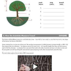 5E: Intro to Trees